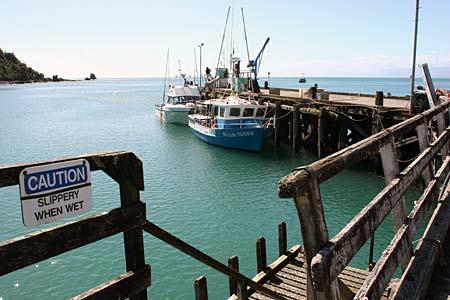 Jackson Bay, West Coast